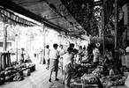 昭和32年に多摩平団地が完成。<br /> 昭和40年代に豊田駅北口が開設され、町の中心は北口側に移った。<br /> 写真中央には「中元の大売り出し」とあり、笹飾りが商店街を一層盛り上げている。
