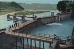 玉川上水の第一水門と堰を写したものです。常に一定の水量が玉川上水に入るように、堰で多摩川の水を水門へ誘導し、水門で水量を調節します。